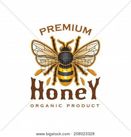 Honey premium product icon of bee and honey drops splash. Vector isolated label for organic natural premium quality honey, beekeeping company sign or farm market and shop
