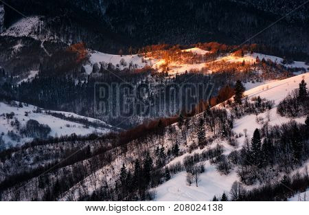 Spot Of Morning Light On Hillside With Forest