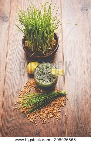 Ayurvedic or medicinal Wheat grass juice with lemon slice in glass, selective focus