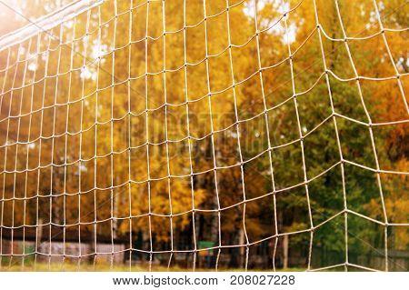 Soccer Or Football Net Background, Autumn