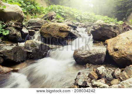 Mountain river in forest. Beauty nature background