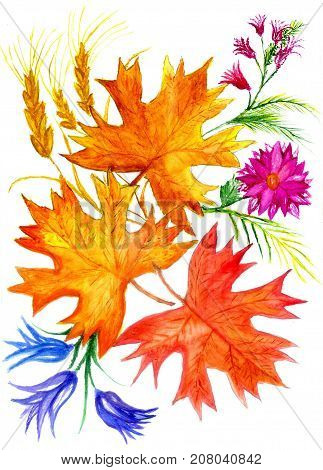 Autumn Leaf In Watercolor