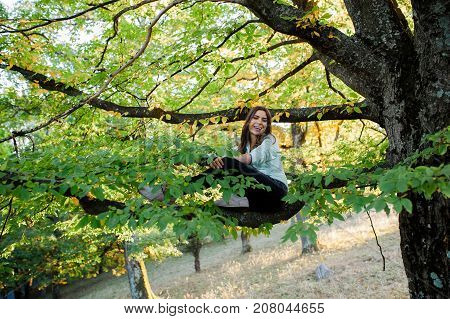 Young woman in a autumn scenary in the forest at sunset, climbed in a tree, sitting relaxed on a branch, taking time off from everything and spending time in nature.