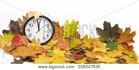 Isolated Electronic Wall Clock. Autumn Abstraction.