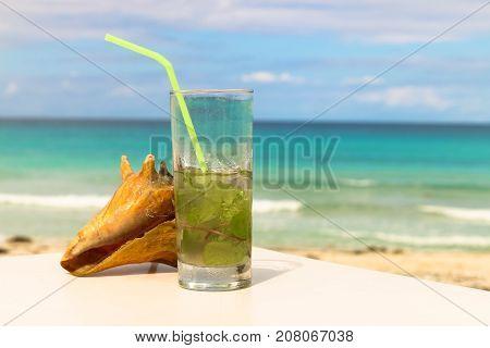 A glass of mahito and sea shell on the background of the Atlantic Ocean, Cuba, Varadero