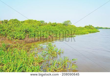 Pantanal Landscape With The River And Green Vegetation Around