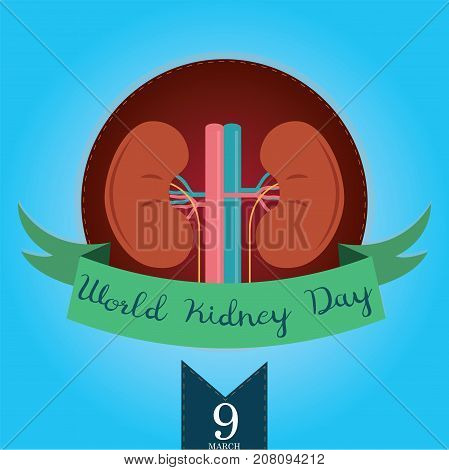 World Kidney Day, March. Human kidney conceptual illustration vector.