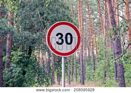 road sign speed limit near a road near a pine forest