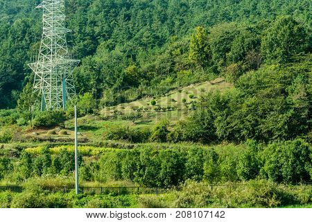 Landscape Of Family Burial Site And White Electrical Tower