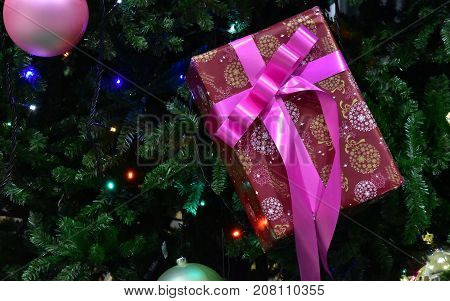Box of the present of the pink ribbon hung to the tree
