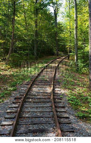 Railroad track winding its way through deciduous trees that are bright green. Dappled light reaches the ground.