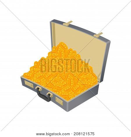Suitcase Bitcoin Full. Treasures Are Crypto Currency. Virtual Money. Vector Illustration