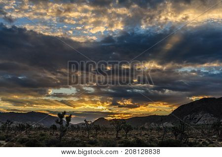 The rising sun breaking trough a thin layer of clouds in Joshua Tree National Park