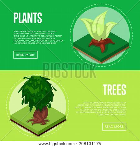 Plants and trees for park design isometric posters. Public parkland zone landscape, outdoor summer natural recreation vector illustration. Decorative plants with green grass 3d elements.