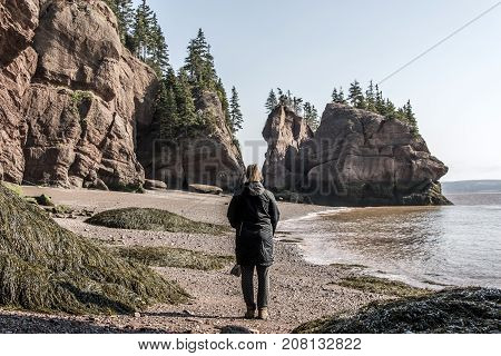 The famous Hopewell Rocks geologigal formations at low tide biggest tidal wave Fundy Bay New Brunswick Canada