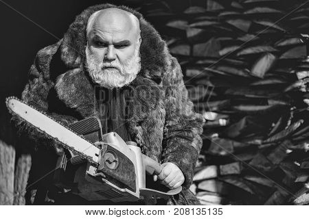 Old bearded man with long silver beard and moustache in fur coat holding big chainsaw sunny day outdoor on wood background