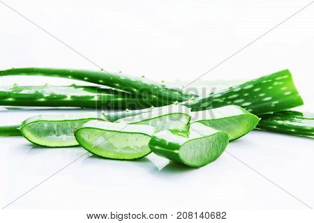 Aloe vera fresh leaves with slices aloe vera gel. isolated over white with copy space.