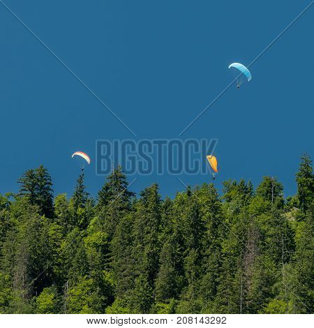 Three paragliders in the mountains above a forest blue sky