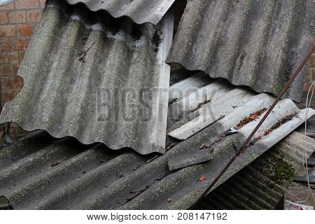 Scattered gray slate sheets for the roof