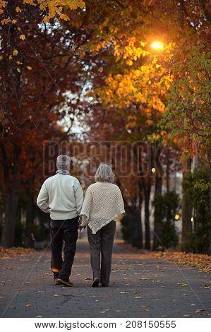 happy Senior couple walking in autumn park