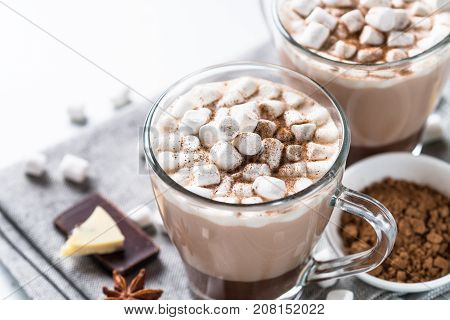 Winter hot drink. Hot chocolate or cocoa with marshmallow and spices on white background. Close up.