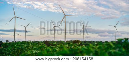 Wind turbine farm. for sustainable development environment friendly. Concept of renewable sustainable alternative energy from wind turbine power.