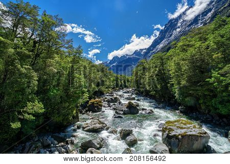 Rocky River Landscape In Rainforest, New Zealand