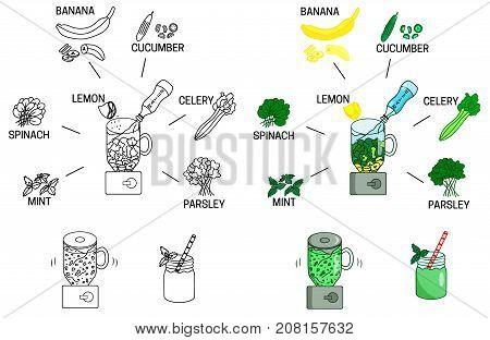 Recipe detox smoothies green vegetables drink vector diy instruction manual illustration sketch