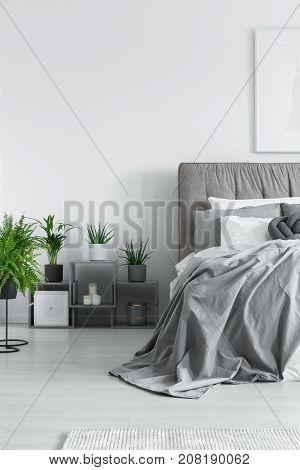 Numerous Plants In Bedroom
