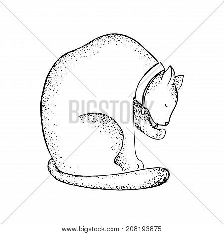 Fat cat in collar line art vector illustration. Lazy cat with dot shading feminine tattoo. Domestic pet in cozy house. Veterinarian logo. Adult kitten logo. Black line kitten icon. Animal adopt stamp