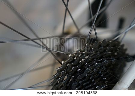 Close-up bicycle parts rear wheel cassette with bicycle spokes. Wheel bicycle details.