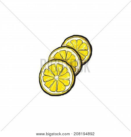 vector sketch cartoon colorful ripe lemon slices, sliced fruit object. Isolated illustration on a white background. Fresh juicy cirtus closeup. Healthy organic food full of vitamins, nutrients