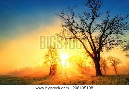 Colorful dramatic sunrise in idyllic rural landscape with tree silhouettes and wafts of morning mist