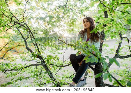 Young energetic woman climbing a tree in the forest, looking happy, enjoying spending time in nature taking time off from the city.