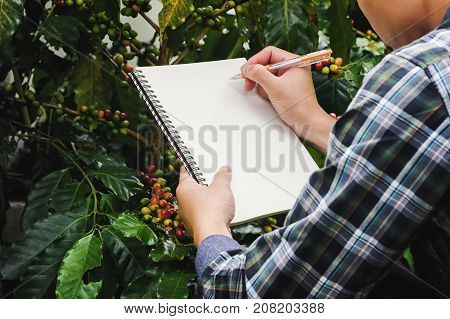 Close up farmer take notes with a pen on a notebook in Coffee Farms Plantations.