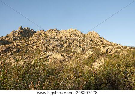 Mediterranean vegetation in Sierra de los Porrones Guadarrama Mountains Madrid Spain.
