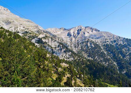Olympus mountain range at summer in Greece.