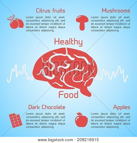 Healthy food infographics useful product icons stimulated human brain on light blue background