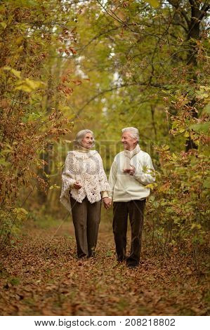 happy senior couple walking in autumnal park