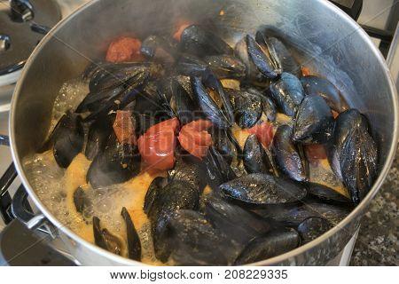 preparing mussels in a pepper broth or impepata di cozze