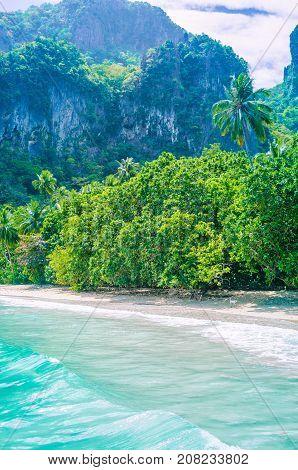 Rocky coastline and vegetation of Cadlao Island, El Nido, Palawan, Philippines.