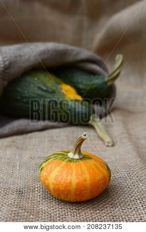 Disc-shaped Ornamental Gourd And Large Green Gourds On Hessian