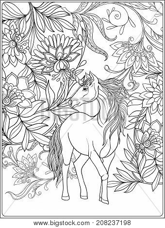 Unicorn in magical garden. Vintage decorative floral pattern background. Colored Vector illustration. Coloring book for adult and older children. Outline drawing coloring page.