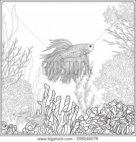 Adult coloring book. Coloring page with underwater world coral reef. Corals, fish and seaweeds.  Outline vector illustration.