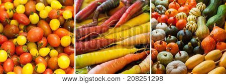 Multi-colored mixed vegetables: cherry tomatoes pumpkins and squashes carrots. Background texture. Healthy vegan food. Autumn thanksgiven harvest.