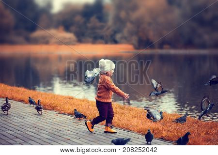 Little Girl In The Autumn Park, Runing With Pigeons.