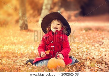 Little girl wearing Halloween witch hat and warm red coat having fun in the park at autumn day. Little orange pumpkin happy laughing child. Toning toned photo.