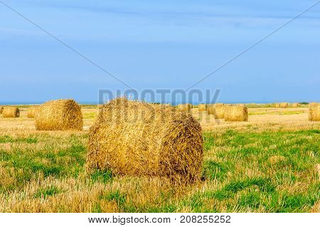 Field With Haystacks And The Ocean, Normandy, France