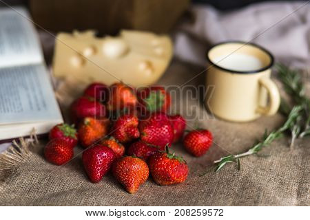 a large guest of juicy red strawberries lies on draped fabric. Masdaam cheese, hurbs, an open book and a vintage cup filled with milk are used as decoration. yammi