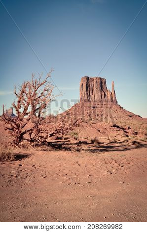 The Great West Mitten Butte in Monument Valley